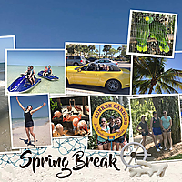 Spring-Break-Right-12x12.jpg