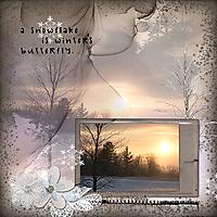Winter_s-Butterfly.jpg