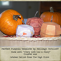Perfect-Pumpkin.jpg