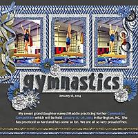 Gymnastics_Jan_18_2014_600x600.jpg