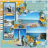 Seasidejm3.jpg