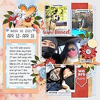 Week_16_Apr_12-_Apr_18.jpg