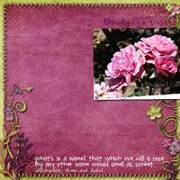 2009-05-07-Purple-Roses.jpg
