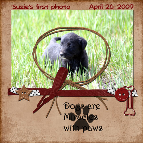 Suzie's First PhotoJune 2