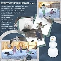 blizzard_09_2.jpg