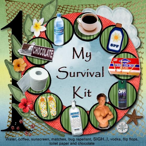 My Survival Kit