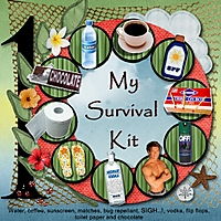 my_survival_kit_-_Page_017.jpg