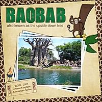 BaobabTree.jpg