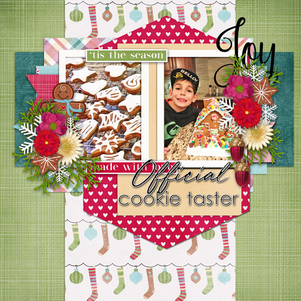 01-cookie-taster