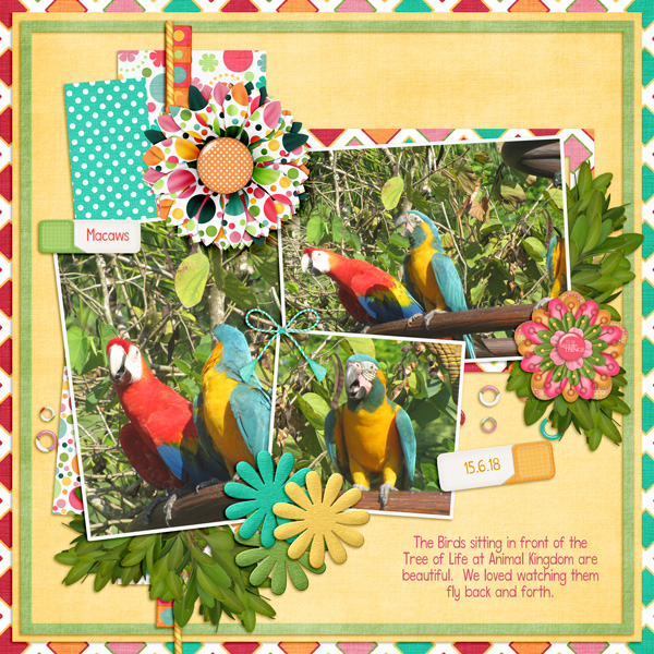 The Macaws of Disney