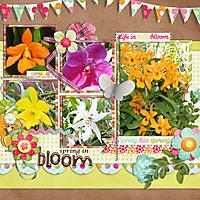 0503-gs-in-full-bloom.jpg