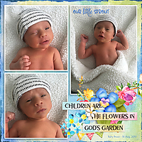 20190816-Baby-Bruce---Our-Little-Sprout-20190424.jpg