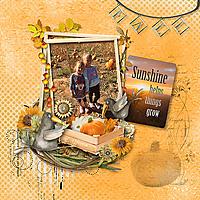 600-SnickerdoodleDesigns-FarmehouseFresh-Kay-O1_copy.jpg