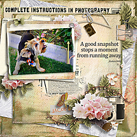 600-snickerdoodle-designs-its-a-snap-jenni-01.jpg