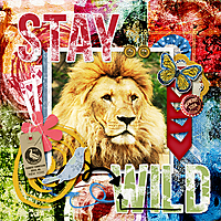 Buffet_MM_AB2_Stay_wild.jpg
