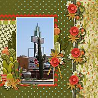Cactus_Garden1.jpg