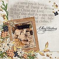 SnickerdoodleDesigns_ChristmasMemories_Linda01-_6001.jpg
