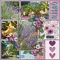 Weedsandwildflowersjd3.jpg