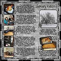 GS_365_2011_week2_rs.jpg