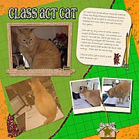 1classactcat.jpg