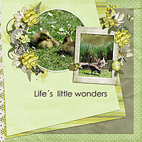 Life_s--little-wonders.jpg