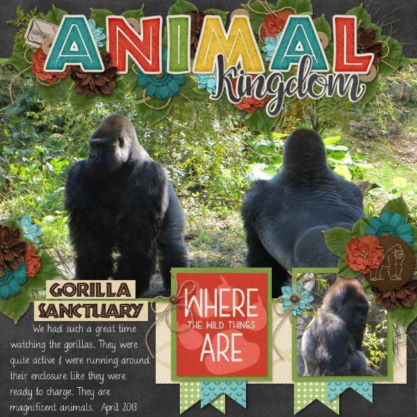 Animal Kingdom Gorilla Sanctuary {2013}