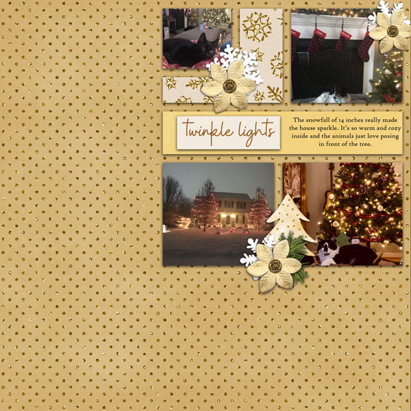 cap_whitespacetemps32_holidaydazzle