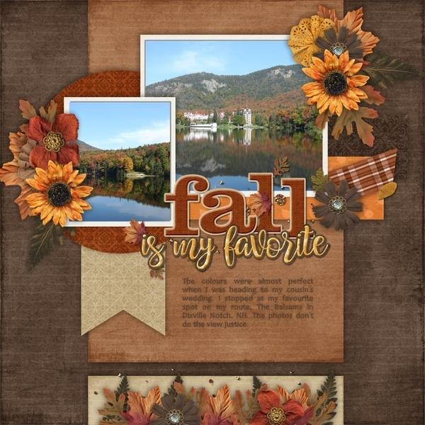Golden Fall Days