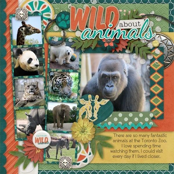 Kingdom Of Animals