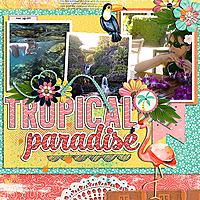 0504-cp-tropical.jpg