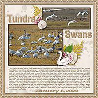 1-January_8_2020_small.jpg