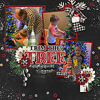 12_Cameron-Trimming-the-tree-copy.jpg