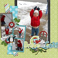 2012-12-29_-Brave-the-Cold.jpg