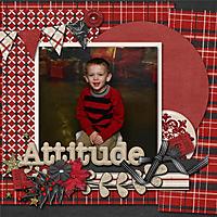 Attitude_copy2.jpg