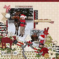 ConniePrince_FarmChristmas-MissFish_SnowFun-Will12-2018_copy.jpg