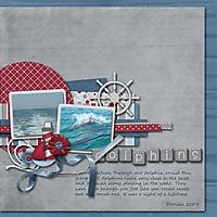 Dolphins_copy.jpg