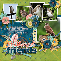 Feathered_Friends-DianaS.jpg