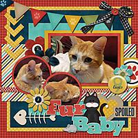 Fur_Baby_copy.jpg