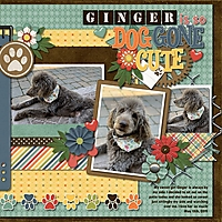 Ginger_is_so_Dog_Gone_Cute.jpg