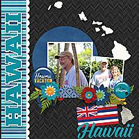 Hawaii-copy.jpg