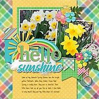 Hello_Sunshine7.jpg