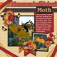 Hummingbird-Moth.jpg
