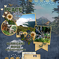 Hurricane-Ridge-web.jpg