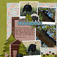 In-the-Woods1.jpg