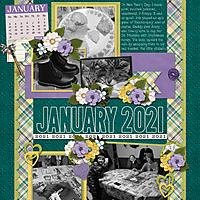 January_Temps_January_2021_-.jpg