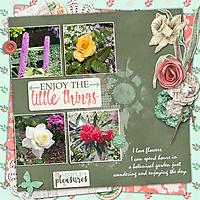 Little_Things_small.jpg