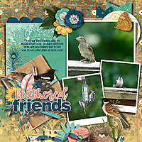 Love_My_Birds_dss.jpg