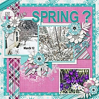 March-Snow-copy.jpg