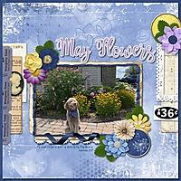 May_Flowers3.jpg