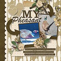My-Pheasant.jpg